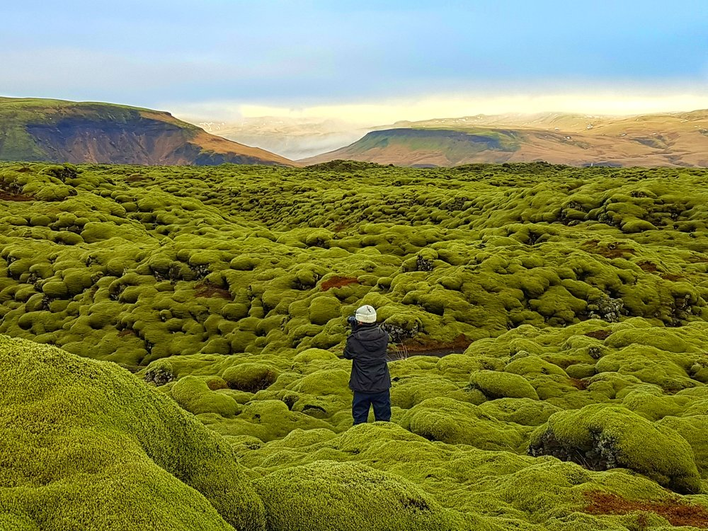 lava fields of iceland