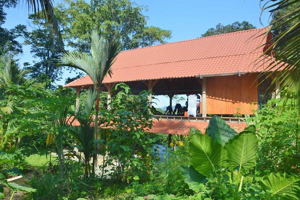 Cashew Hill Jungle Lodge now....
