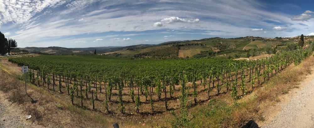 riding a bike around tuscany voyedge rx