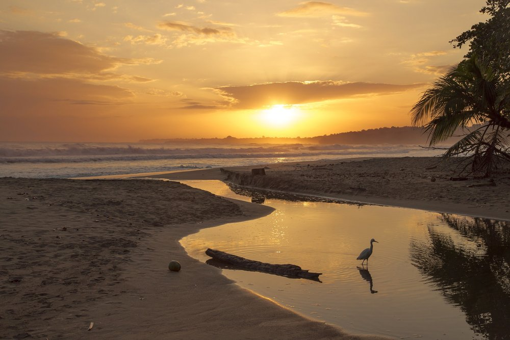 Costa Rica is a world unlike any other. Be prepared for a digital detox and get ready for this!