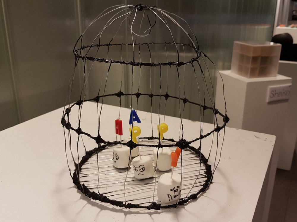 carceral cultures - art student art - bird cage - march 2018.jpg