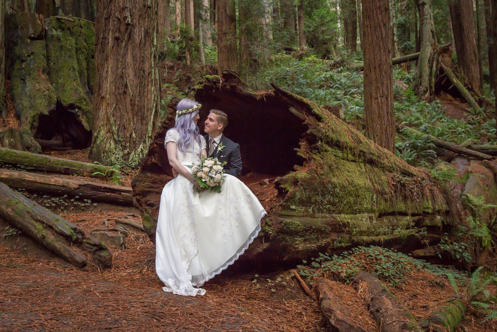 Our Wedding Ceremony 2016: Humboldt Redwoods, Northern California