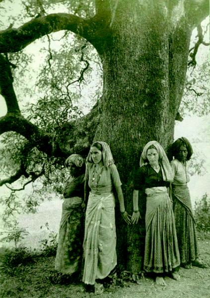 Chipko members saving a tree. (source:  The Chipko Movement of India )