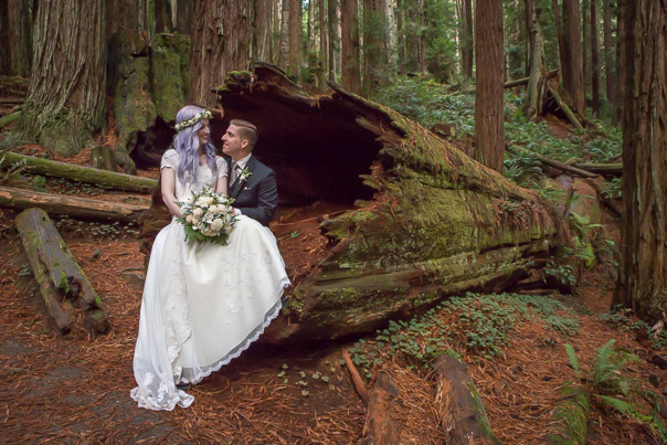 Our Redwood Forest wedding.