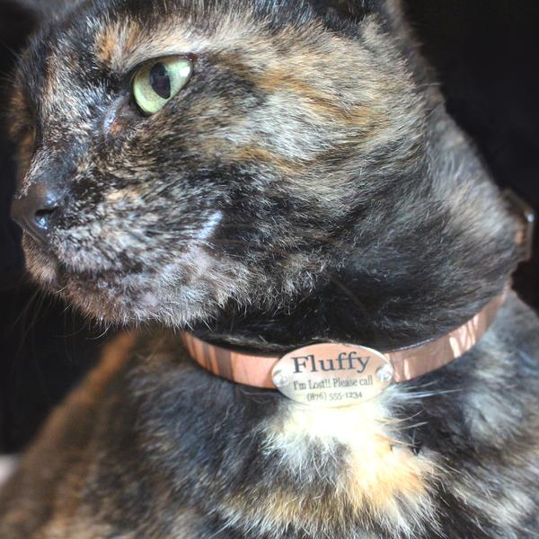 pepper-silver-cat-collar_grande.jpg