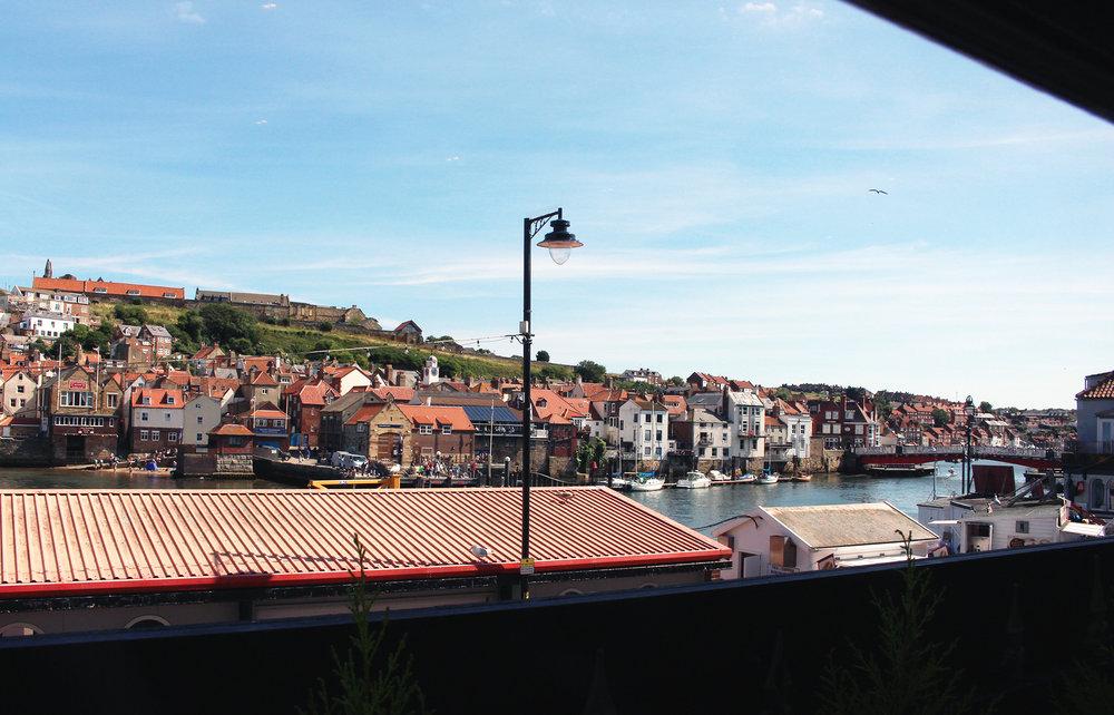 12 window view.jpg