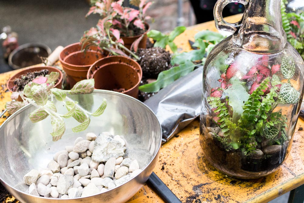 Terrarium workshop, geo-fleur, at Form Lifestyle Store, Manchester