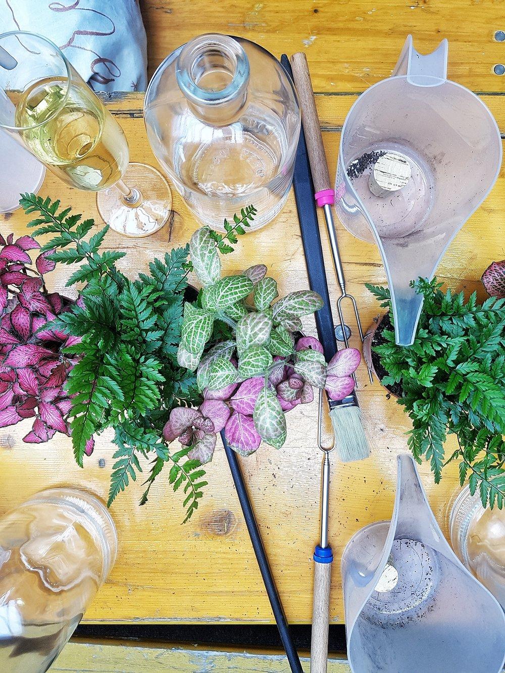 geo-fleur terrarium workshop