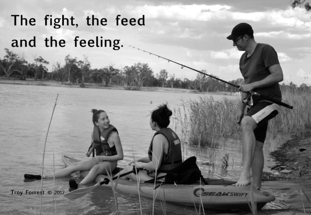 Fight Feed Feeling.jpg.png