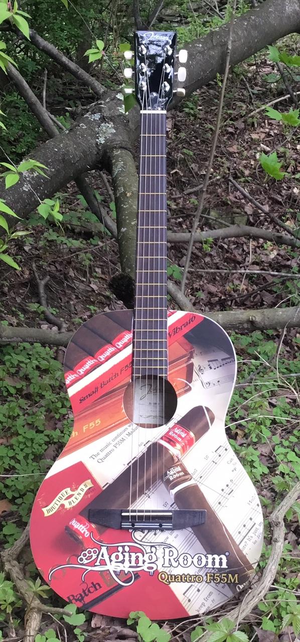 Aging Room guitar.jpg