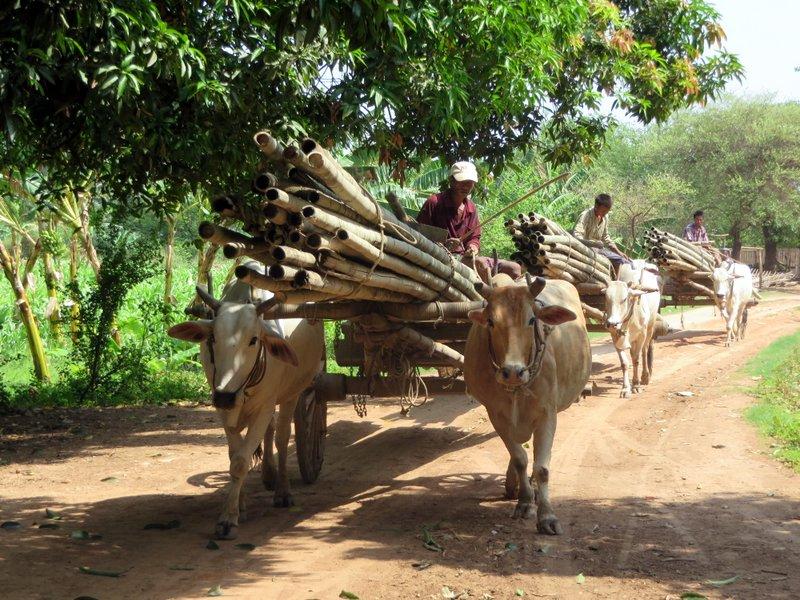 Local traffic jam