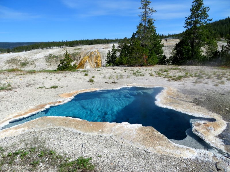 Fantastic Geo-Thermal displays at YNP