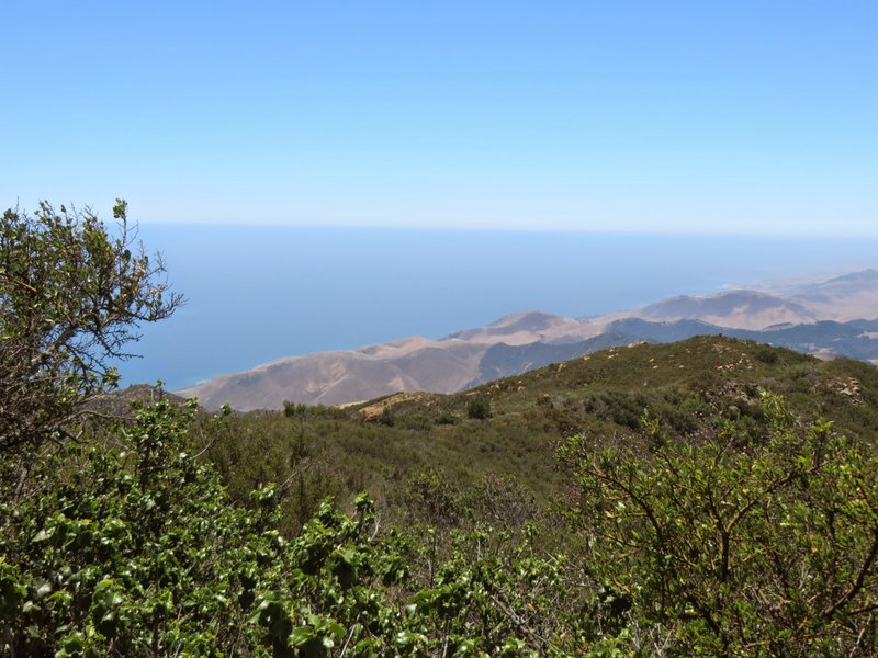 Gaviota Peak:  Almost killed me to get here.