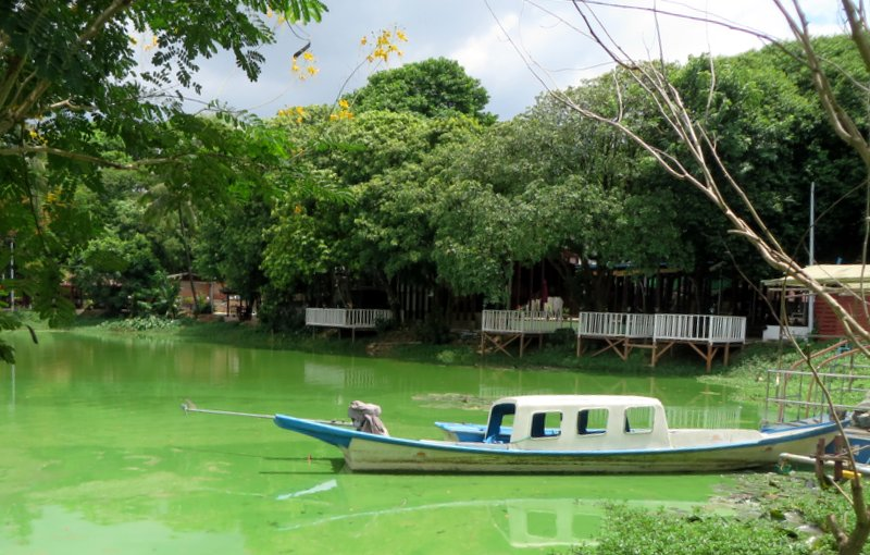 Yangon Myanmar Kandawygi lake.JPG