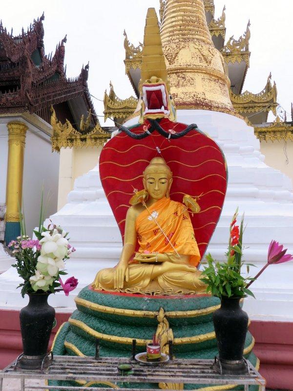 Yangon Myanmar Shwedagon Pagoda (32).JPG