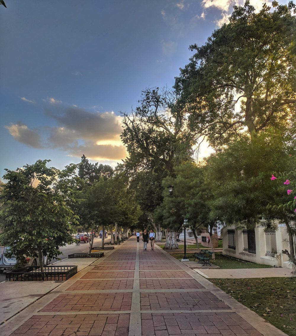 Sunset on Paseo Montejo.jpg