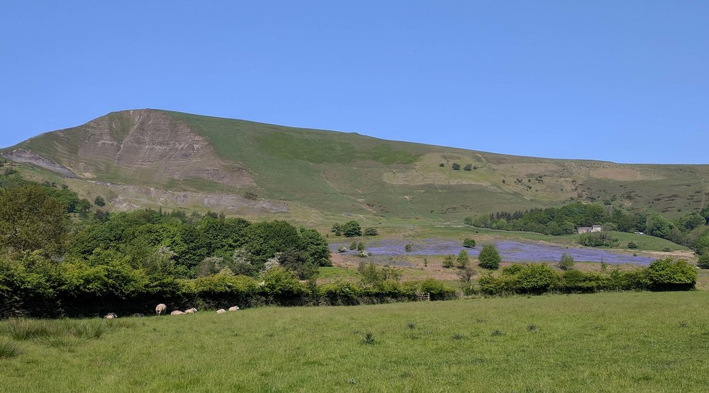Looking up to Mam Tor over the Bluebell fields