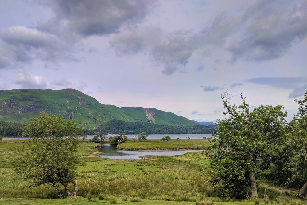 Across the marshland at Derwentwater