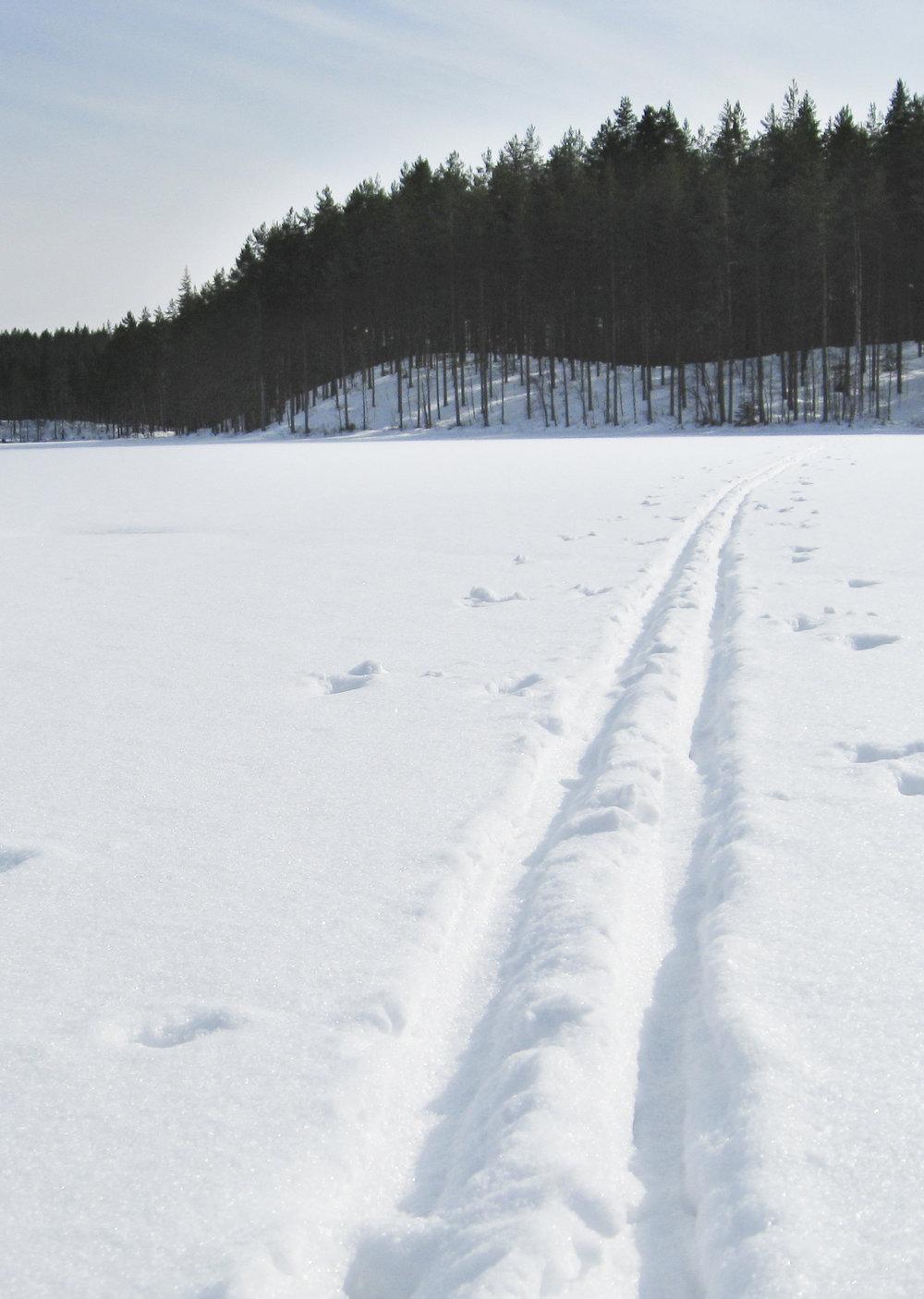 skiing lapland