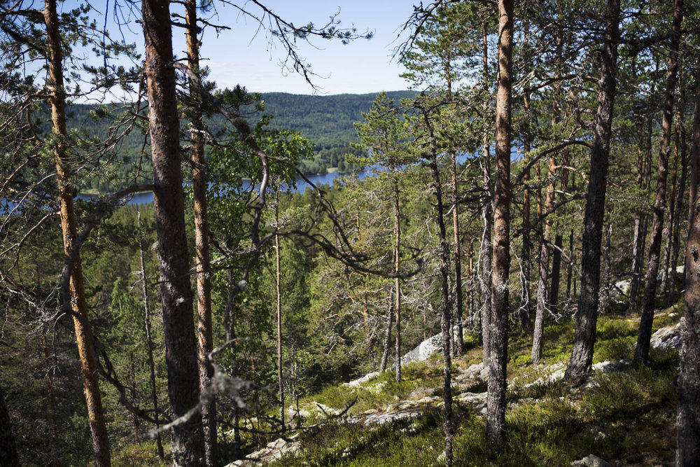 great outdoors finland