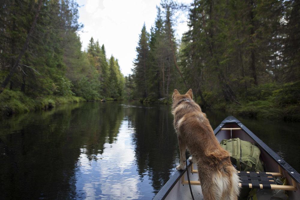 luontoon.fi