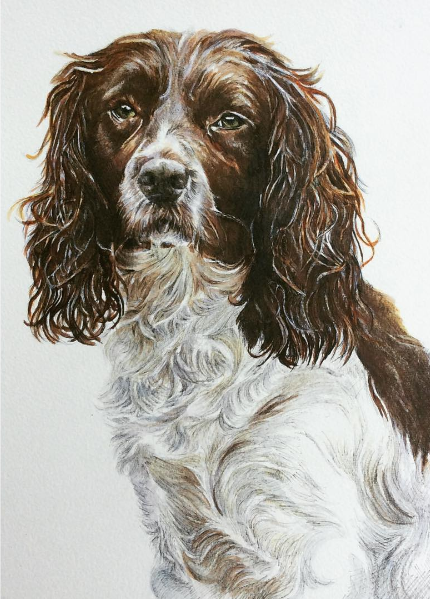 Pip - Mixed Media Commission by Kate Simpson  Size: 29cm x 21cm
