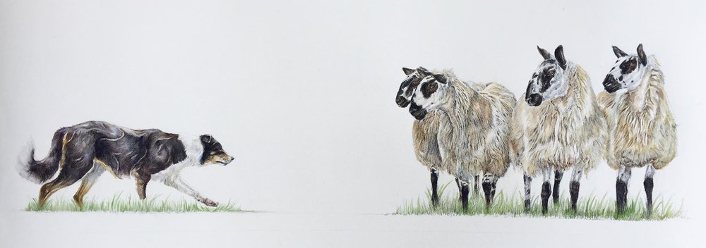 Steady On   Original Mixed Media by Kate Simpson   60cm x 25cm