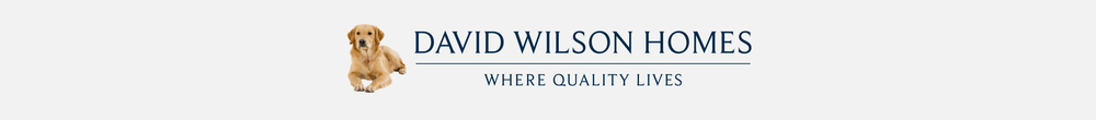 davidwilsonmarketing
