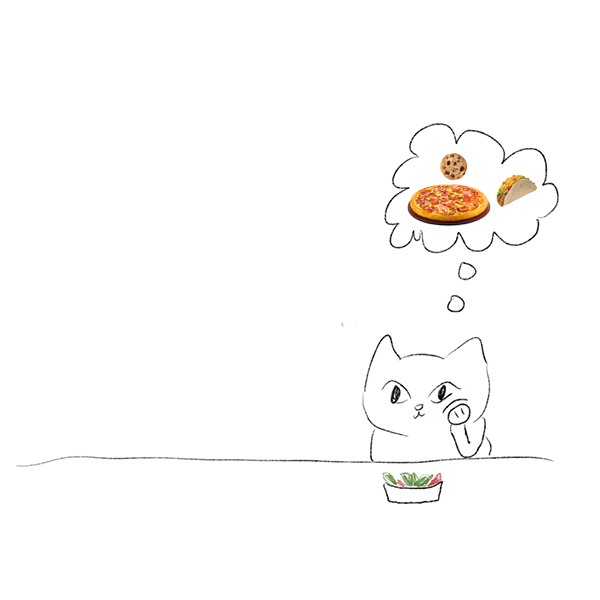 salad cat by Beth Spencer
