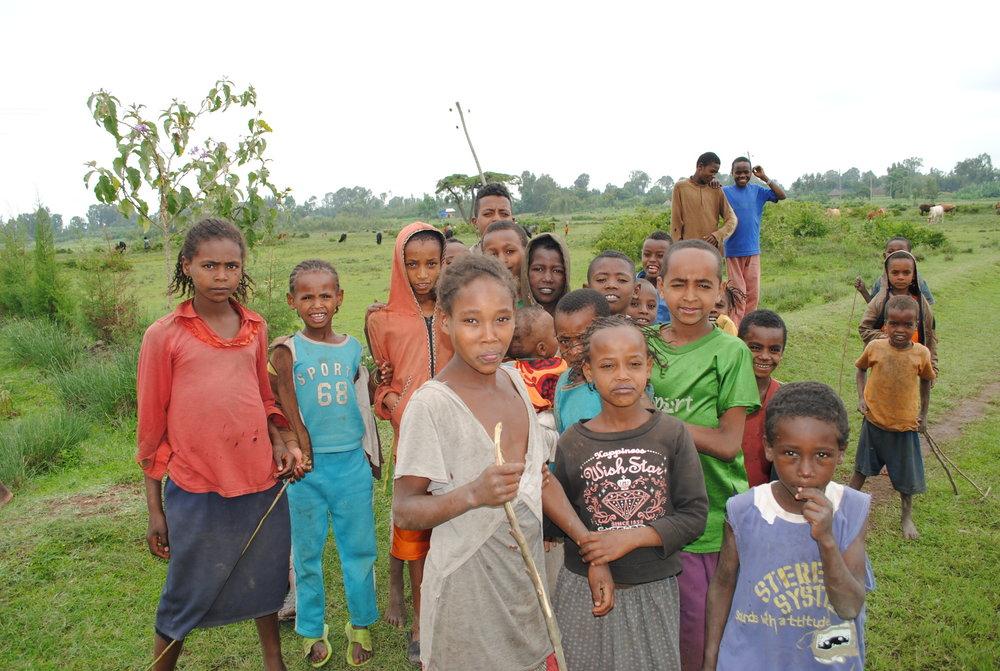 Ethiopia July 2015 1042.JPG