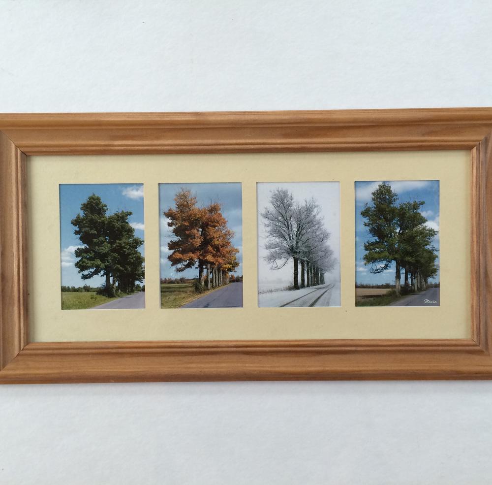 Framed (4) Photo Collage
