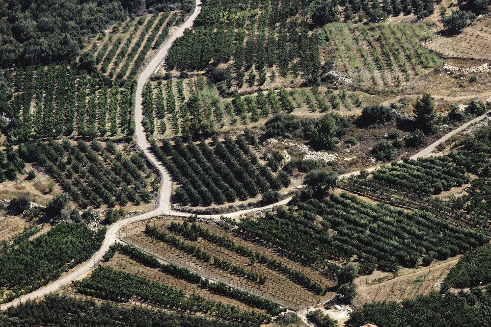 Israel9.jpg
