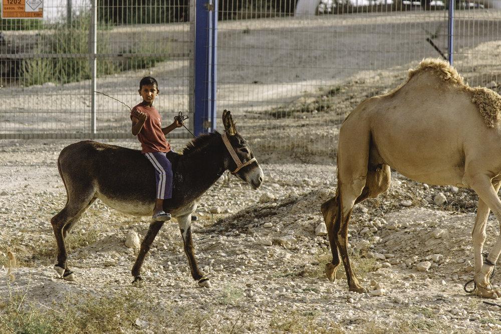 Israel60.jpg