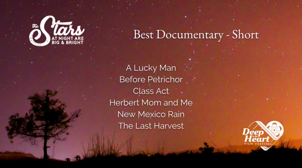 Best Documentary Short.png