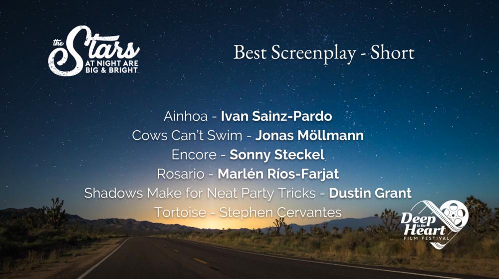 Best Screenplay Short 2019.png