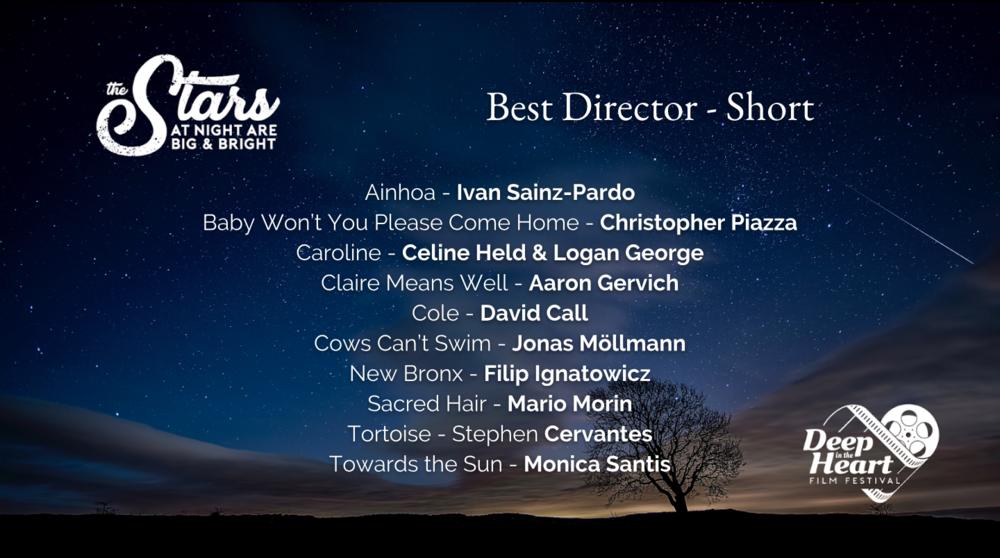 Best Director Short 2019.png