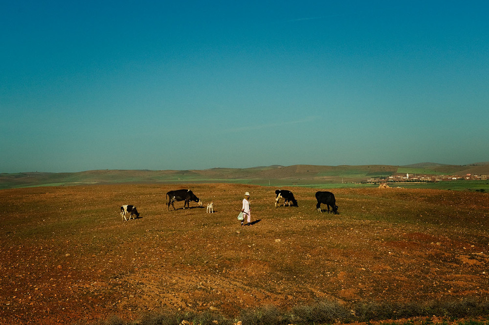 MoroccoDrive02_9514.jpg