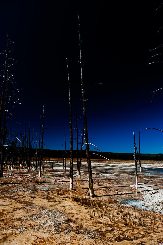 Yellowstone_293.jpg
