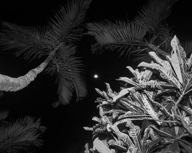 #Repost @mirandagabe_ ・・・ Full moon. Itacoatiara. Niterói, Brazil, 2018. . #contemporaryart #modern #sketch #sculpture #painting #contemporary #ink #draw #fineart #streetart #artgallery #creative #fineart #abstractpainting #myart #artcollector #abstractart #artphotography #modernart #instaartwork #oilpainting #contemporarypainting #painter #instaartoftheday #nycspc #svasummerlens #svabfaphotovideo