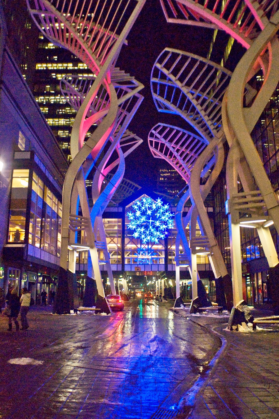 Galleria Trees, Calgary- Oct 14-20