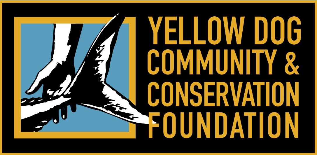 All Year Round Funding for Fishing Communities at YDCCF