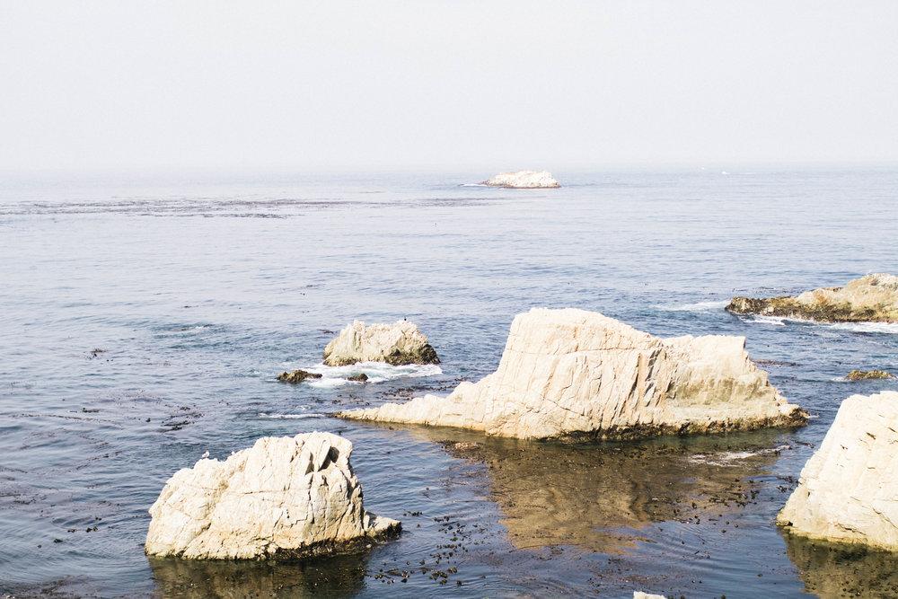 monterey-photos-by-samantha-look.jpg