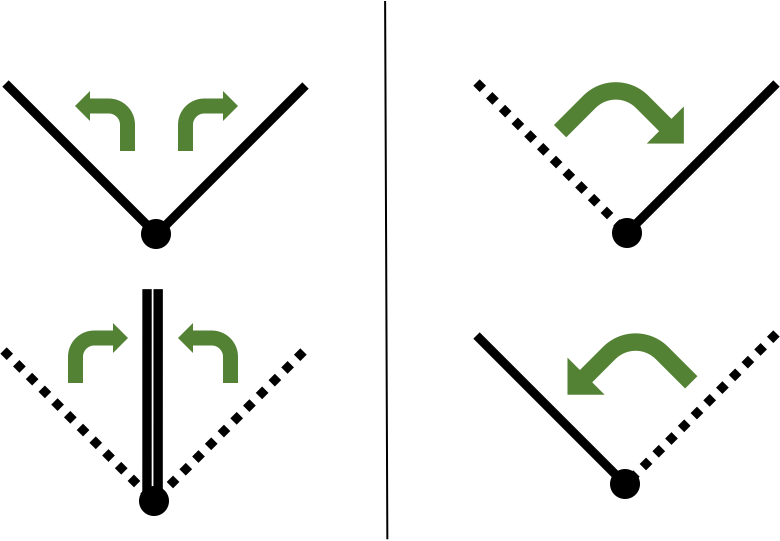 Jet propulsion is simplified to a clapping motion (left) while flapping propulsion is simplified to a two-dimensional flapping plate (right)