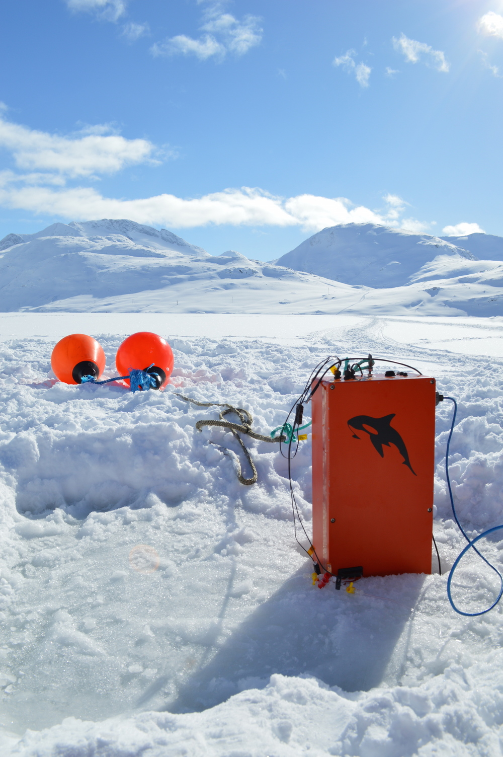 Motility testing in Greenland.