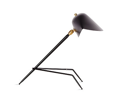 Serge Mouille One arm floor lamp France.jpg
