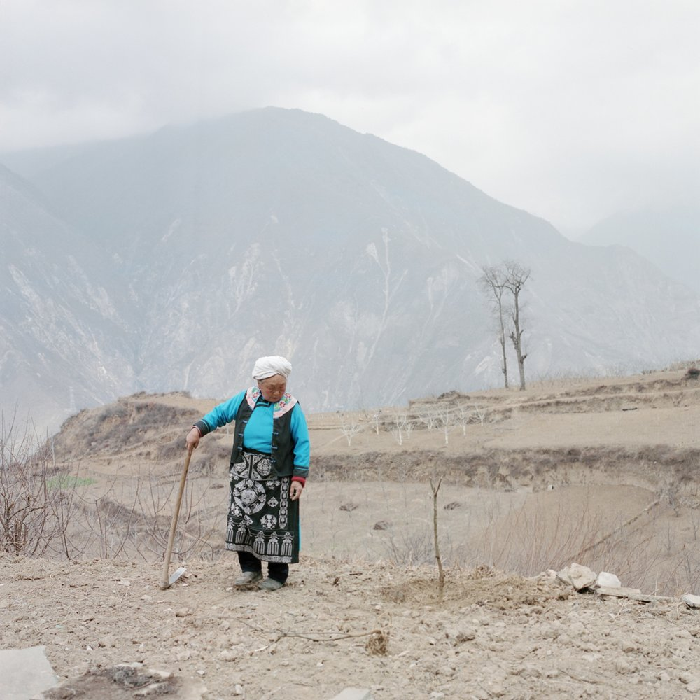 Woman Planting Pepper Tree at the Site of her Old House, Radish Village, Sichuan, China, March 2016