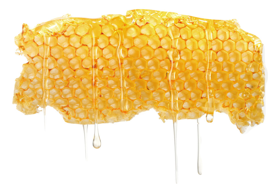 Honeycomb with drop.jpg