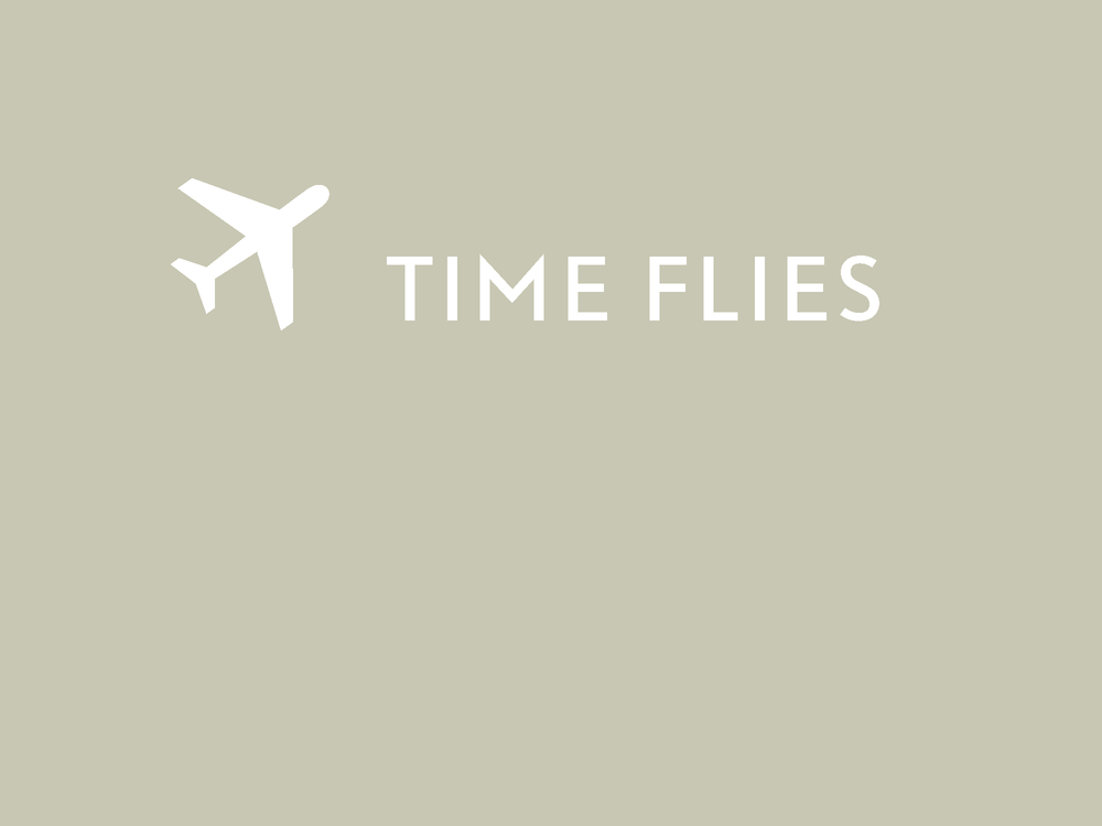 time-flies_presentation_Page_01.png