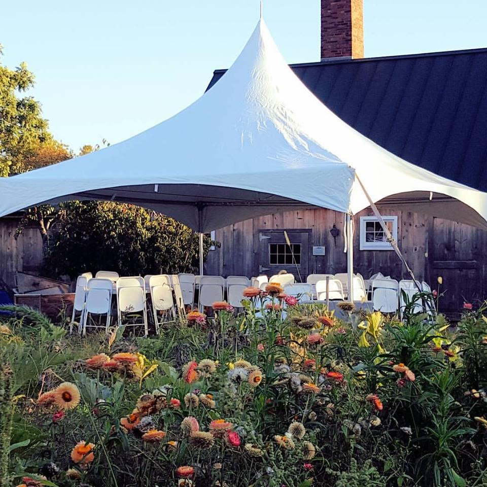 Back Yard Tents & Backyard Parties