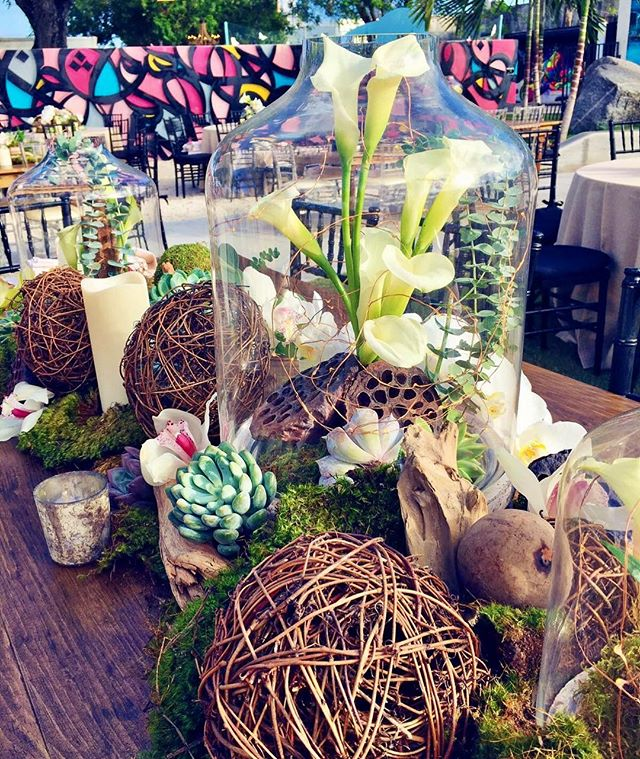 Nothing quite like an earthy centerpiece with a bold graffiti backdrop. Loved the look of yesterday's event at @wynwoodwallsofficial for the kick off of Art Basel! 📸: @e.lilili  #centerpiece #tablescape #terrarium #flowers #moss #artbasel2016 #artbaselmiami #wynwoodwalls #wynwoodlife #petalproductions